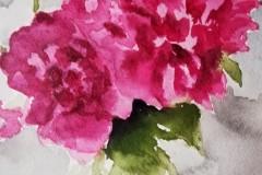fiori-in-vaso2