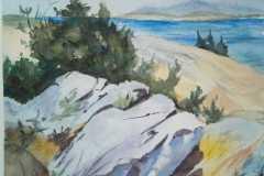 2020_05_05_-studio-A.-Wyeth-Laura-Sarra