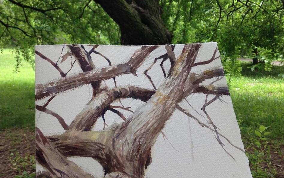 albero ad acquerello